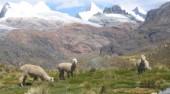 13 de mayo, proyección-conferencia: Los Andes desde Ushuaia a la Cordillera Blanca