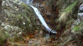 Salida al Parque Nacional de Cabañeros. Rocigalgo.